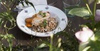assiette de légumes et poulet