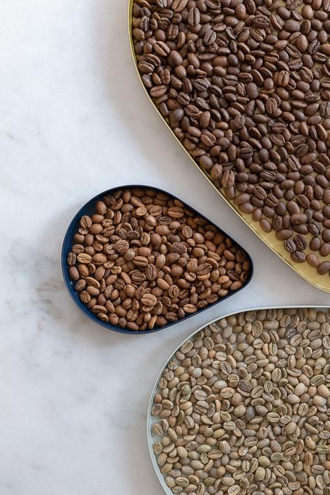 différents stades de torréfaction de café