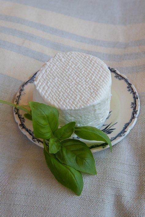 fromage de chèvre frais et basilic